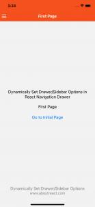 DynamicallySetDrawerOptions5