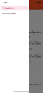 hide_screen_from_drawer_menu1