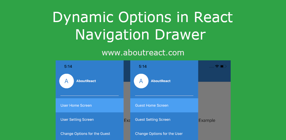 Dynamically Set Drawer/Sidebar Options in React Navigation Drawer