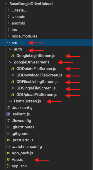react_native_google_drive_example_structure